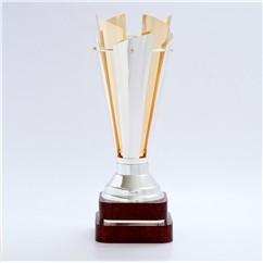 freedom trophy